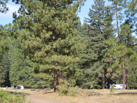 Camp among Teanaway ghosts in Casland