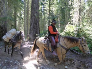 Tales from the Trail: Repairing Waptus River Trail