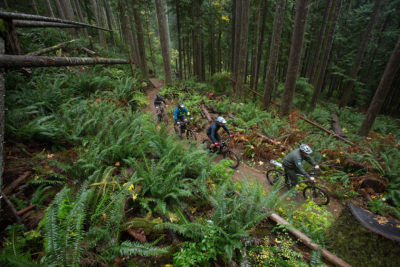 New Backcountry Trail Opens at Olallie
