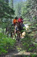 Teaming up with the Backcountry Horsemen